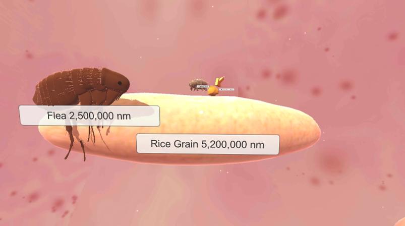 The Size of Nanoscale